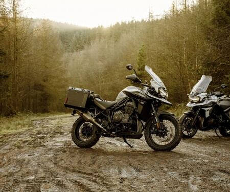 Triumph Tiger 1200 Alpine Edition und Desert Edition 2020