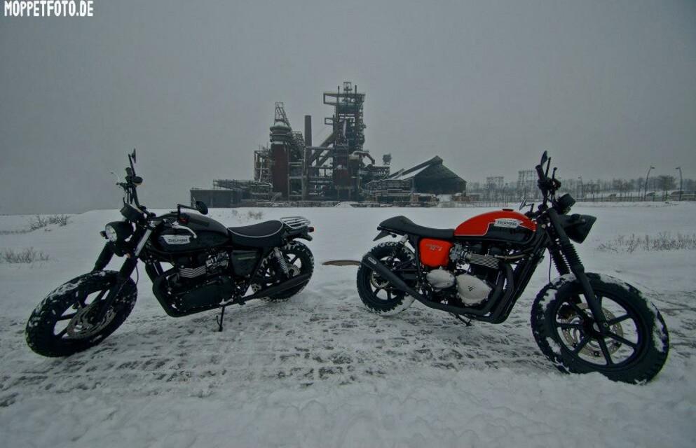 Schwarz oder Orange??